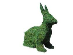 Sitting Bunny Mossed Topiary 14inch Tall